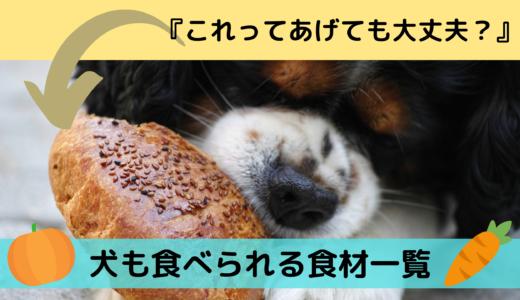 『これってあげても大丈夫?』犬も食べられる食材一覧