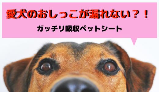 愛犬のおしっこが漏れない?!ガッチリ吸収ペットシート