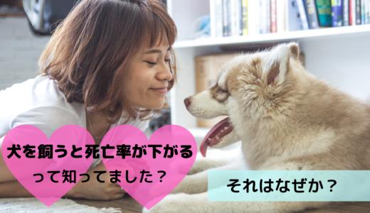 犬を飼うと死亡率が下がるって知ってました?それはなぜか?