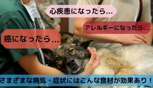 愛犬が癌になったら...さまざまな病気・症状にはこんな食材が効果あり!