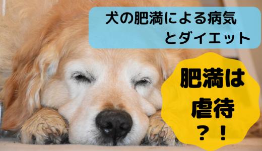 肥満は虐待?!犬の肥満による病気とダイエット