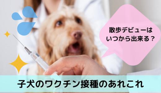 散歩デビューはいつから出来る?子犬のワクチン接種のあれこれ