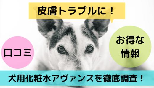 皮膚トラブルに!犬用化粧水アヴァンスを徹底調査!口コミやお得な情報